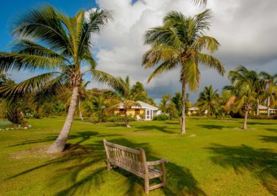 Cottages nestled among the palms trees at Nisbet Plantation Beach Resort Nevis