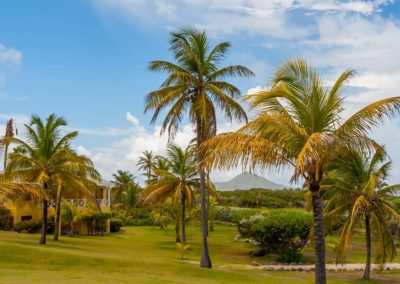 Ocean View Rooms amongst the palm trees at Nisbet Plantation Beach Resort Nevis